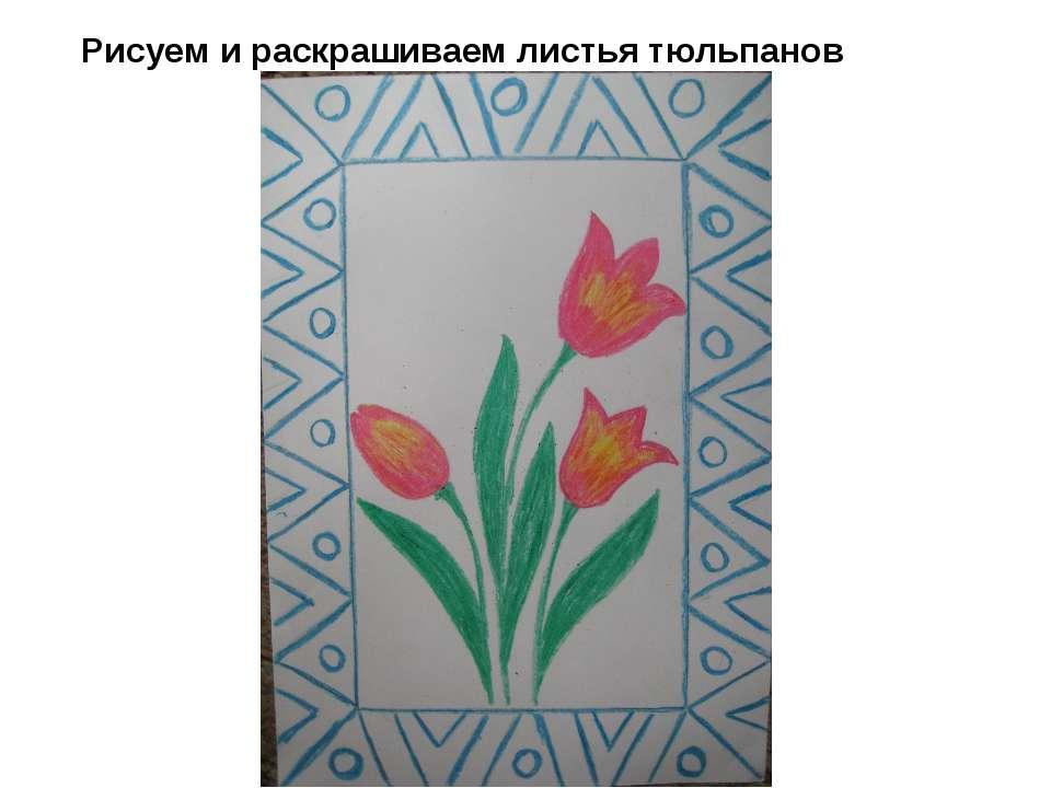 Рисуем и раскрашиваем листья тюльпанов