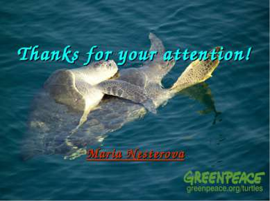 Thanks for your attention! Maria Nesterova