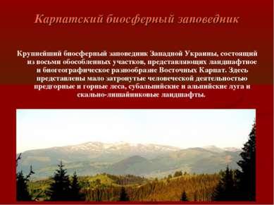 Карпатский биосферный заповедник Крупнейший биосферный заповедник Западной Ук...