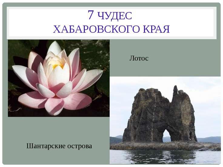 7 ЧУДЕС ХАБАРОВСКОГО КРАЯ Лотос Шантарские острова