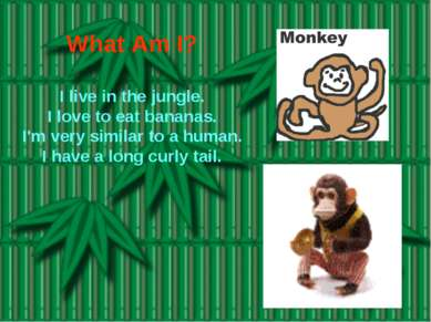 What Am I? I live in the jungle. I love to eat bananas. I'm very similar to a...