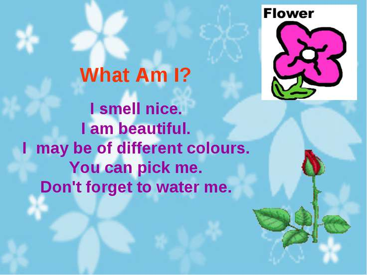 What Am I? I smell nice. I am beautiful. I may be of different colours. You c...