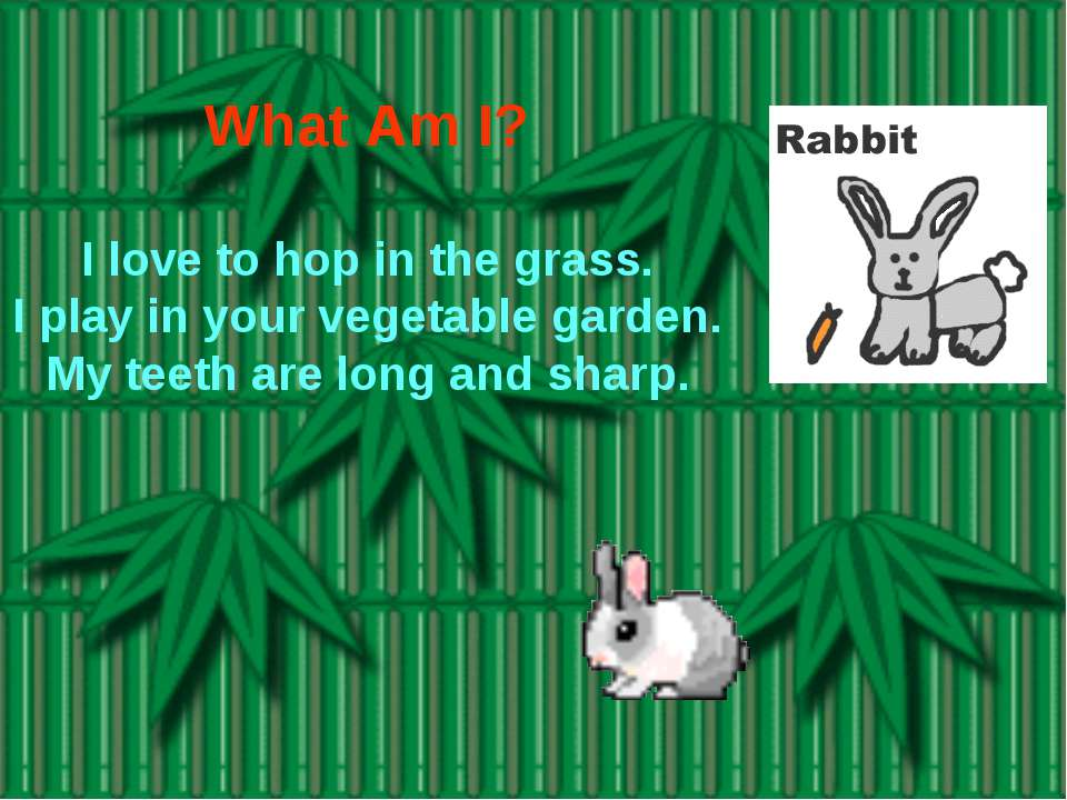 What Am I? I love to hop in the grass. I play in your vegetable garden. My te...