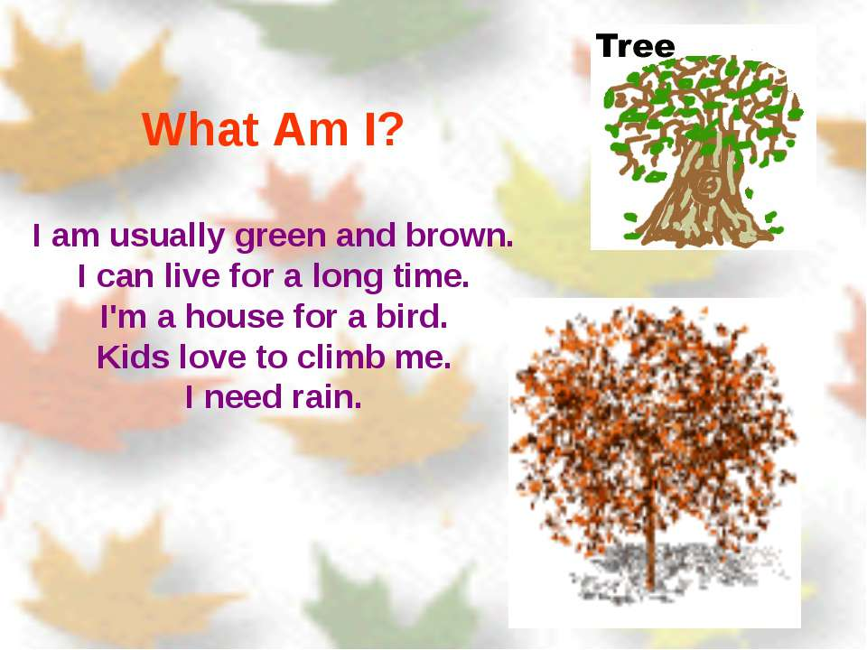 What Am I? I am usually green and brown. I can live for a long time. I'm a ho...