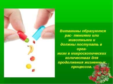 Витамины образуются рас- тениями или животными и должны поступать в орга- низ...