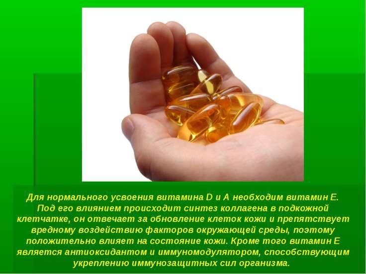 Для нормального усвоения витамина D и А необходим витамин Е. Под его влиянием...