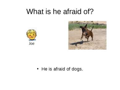 What is he afraid of? He is afraid of dogs.