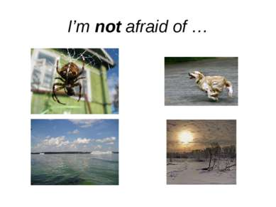 I'm not afraid of …