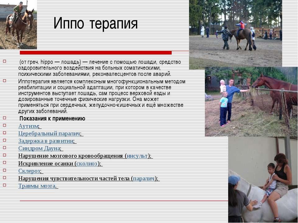 Иппо терапия (от греч. hippo— лошадь)— лечение с помощью лошади, средство о...