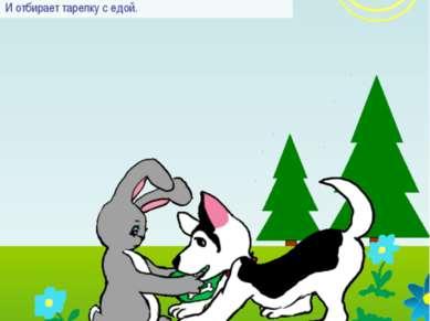 Никогда не отбирай у собаки миску с едой. Заяц не знает, чем бы заняться. Ста...