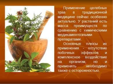 Применение целебных трав в традиционной медицине сейчас особенно актуально. У...