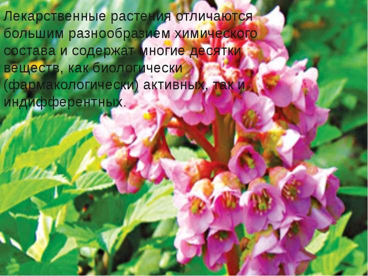 Лекарственные растения отличаются большим разнообразием химического состава и...