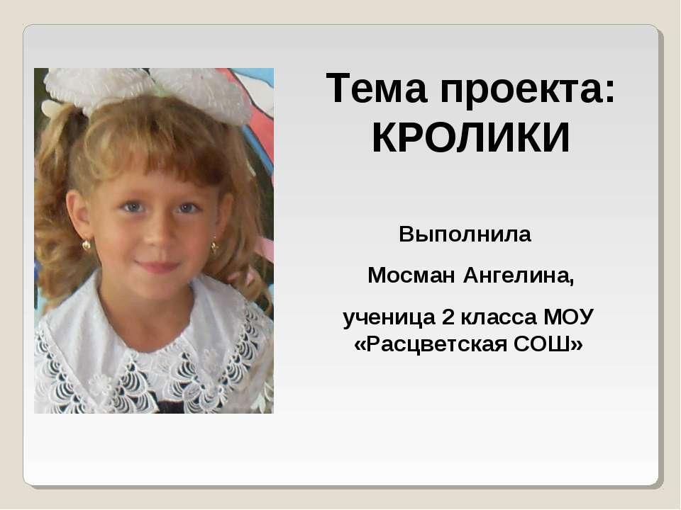Тема проекта: КРОЛИКИ Выполнила Мосман Ангелина, ученица 2 класса МОУ «Расцве...