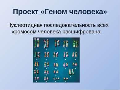 Проект «Геном человека» Нуклеотидная последовательность всех хромосом человек...