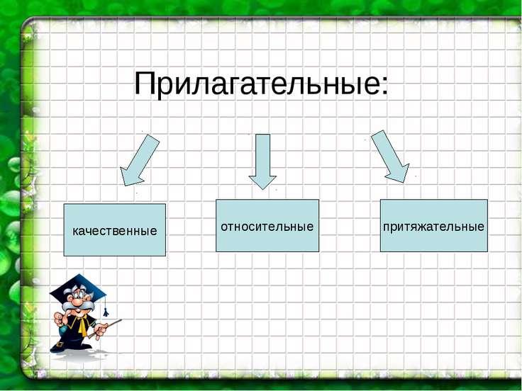 Прилагательные: качественные относительные притяжательные