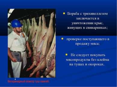Борьба с трихинеллезом заключается в уничтожении крыс, живущих в свинарниках;...