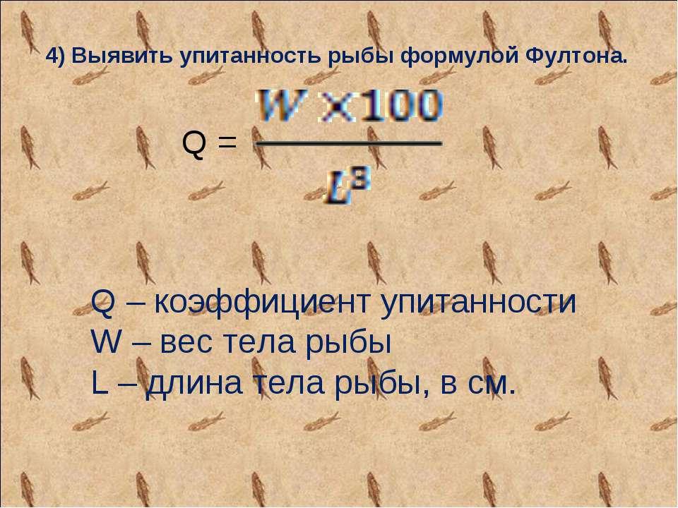 4) Выявить упитанность рыбы формулой Фултона. Q – коэффициент упитанности W –...