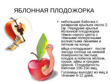 ЯБЛОННАЯ ПЛОДОЖОРКА небольшая бабочка с размахом крыльев около 2 см. Передние...