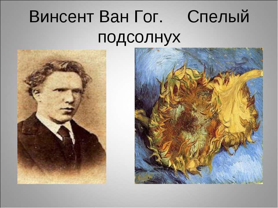 Винсент Ван Гог. Спелый подсолнух