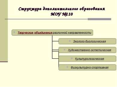 Структура дополнительного образования МОУ №110