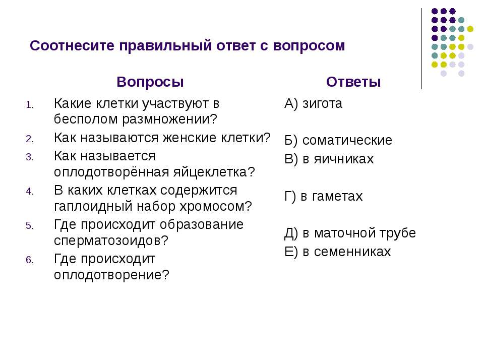 Соотнесите правильный ответ с вопросом Вопросы Ответы Какие клетки участвуют ...