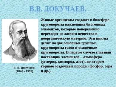В. В. Докучаев (1846 - 1903) Живые организмы создают в биосфере круговороты в...