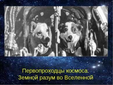 Первопроходцы космоса. Земной разум во Вселенной
