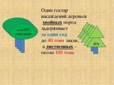 Один гектар насаждений деревьев хвойных пород задерживает за один год до 40 т...
