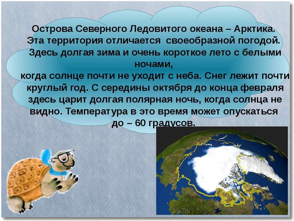 Острова Северного Ледовитого океана – Арктика. Эта территория отличается свое...