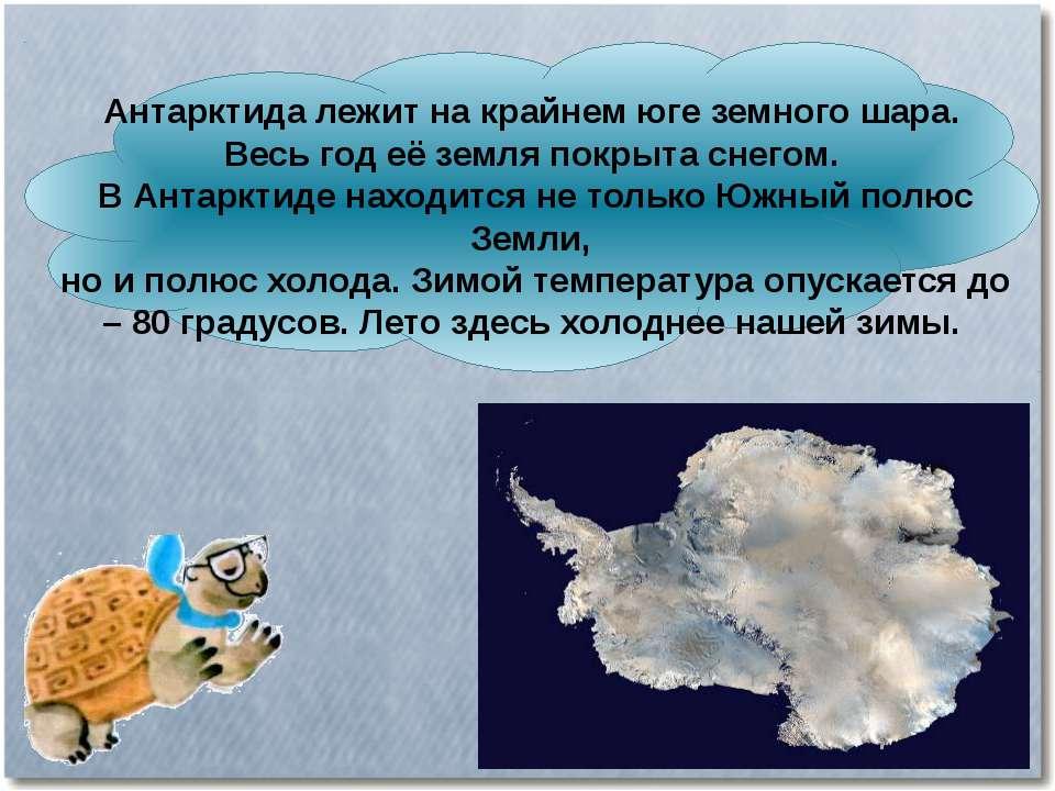 Антарктида лежит на крайнем юге земного шара. Весь год её земля покрыта снего...