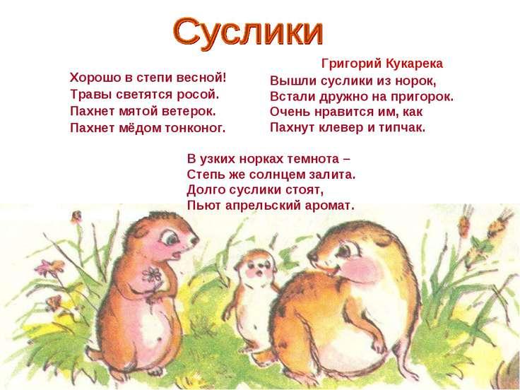Хорошо в степи весной! Травы светятся росой. Пахнет мятой ветерок. Пахнет мёд...