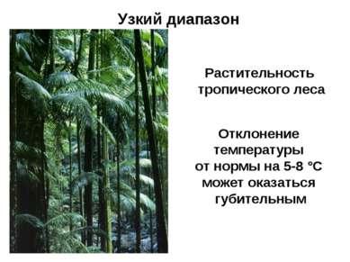 Узкий диапазон Растительность тропического леса Отклонение температуры от нор...