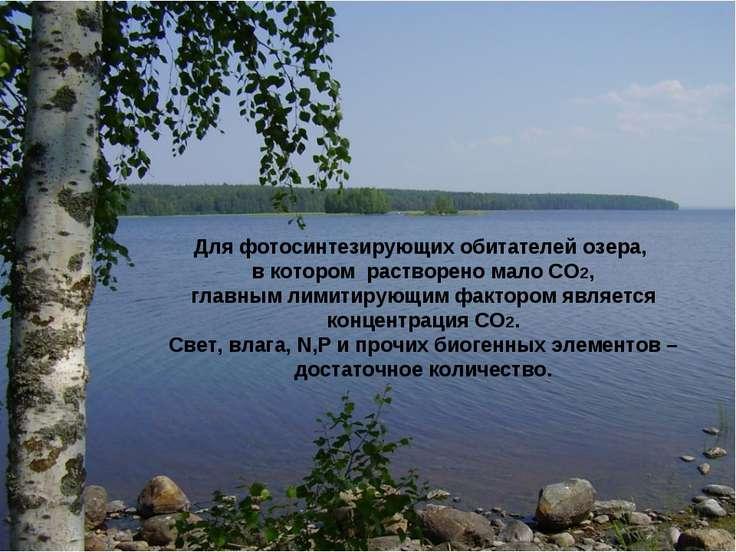 Для фотосинтезирующих обитателей озера, в котором растворено мало СО2, главны...