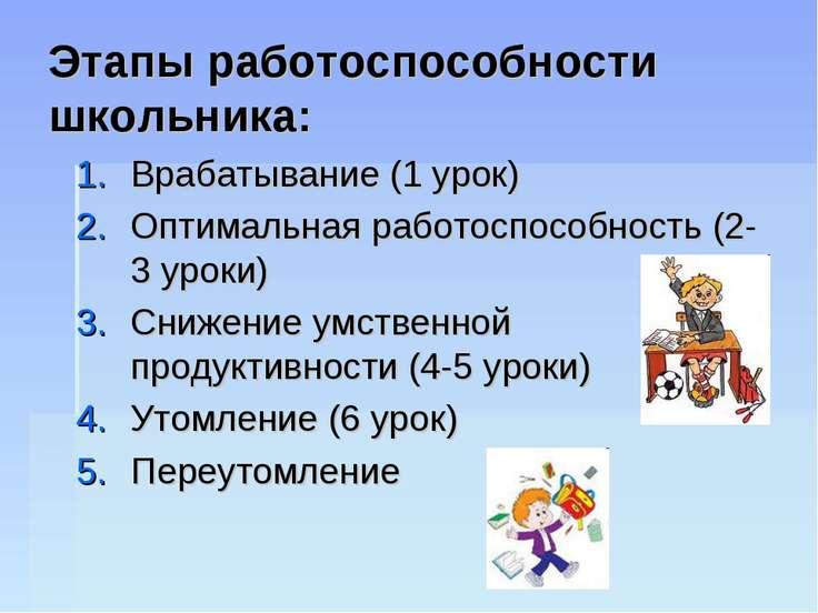 Этапы работоспособности школьника: Врабатывание (1 урок) Оптимальная работосп...