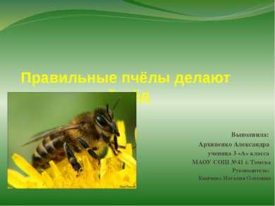 Правильные пчёлы делают правильный мёд Выполнила: Архипенко Александра учениц...