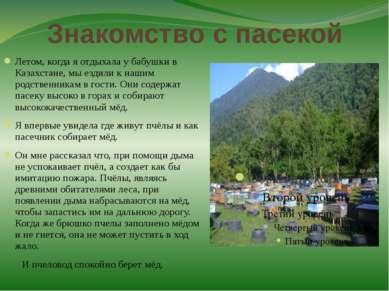 Знакомство с пасекой Летом, когда я отдыхала у бабушки в Казахстане, мы ездил...