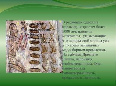 В раскопках одной из пирамид, возрастом более 5000 лет, найдены материалы, ук...