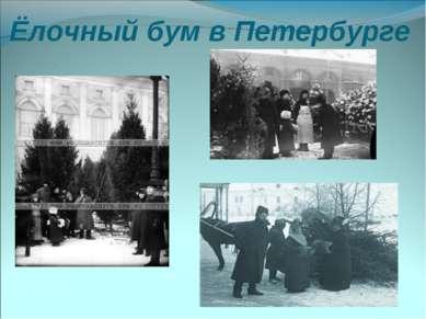 Ёлочный бум в Петербурге
