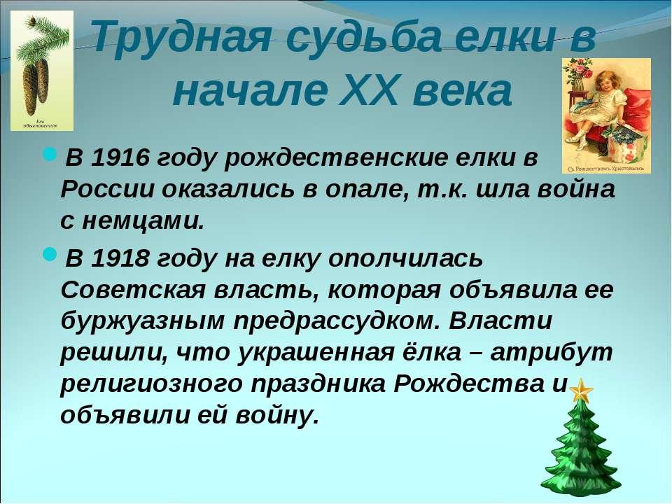 Трудная судьба елки в начале XX века В 1916 году рождественские елки в России...