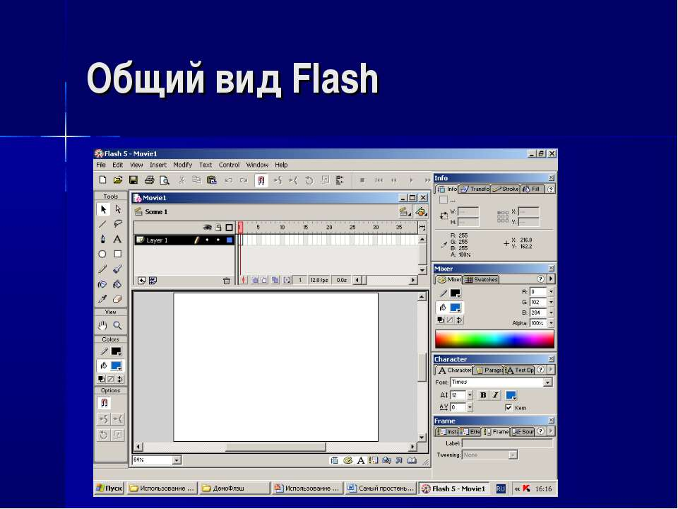 Общий вид Flash