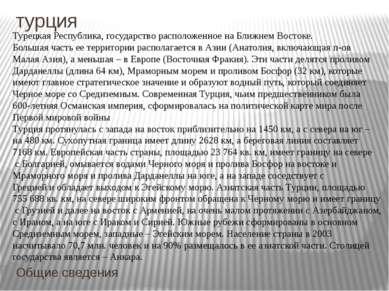 турция Общие сведения Турецкая Республика, государство расположенное на Ближн...