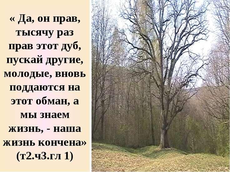 « Да, он прав, тысячу раз прав этот дуб, пускай другие, молодые, вновь поддаю...