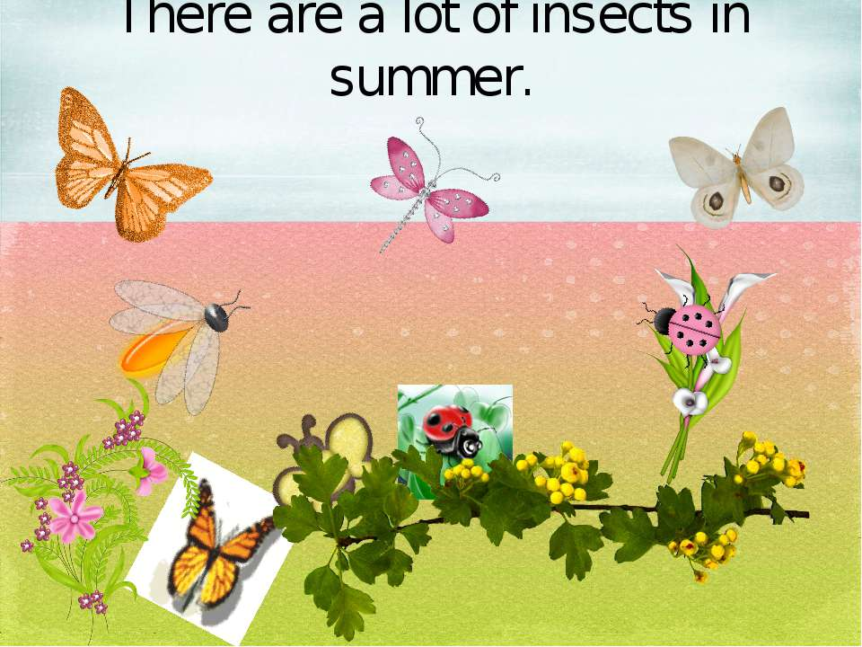 There are a lot of insects in summer.