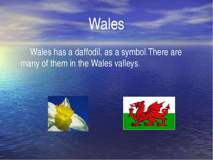 Wales Wales has a daffodil, as a symbol.There are many of them in the Wales v...