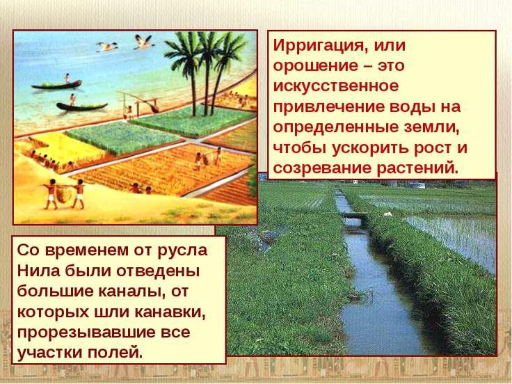Ирригация, или орошение – это искусственное привлечение воды на определенные ...