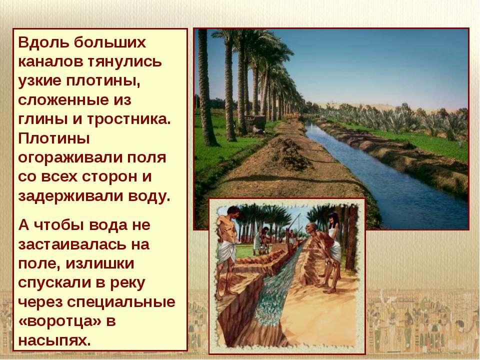 Вдоль больших каналов тянулись узкие плотины, сложенные из глины и тростника....