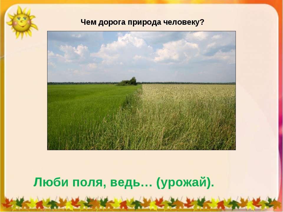 Чем дорога природа человеку? Люби поля, ведь… (урожай).