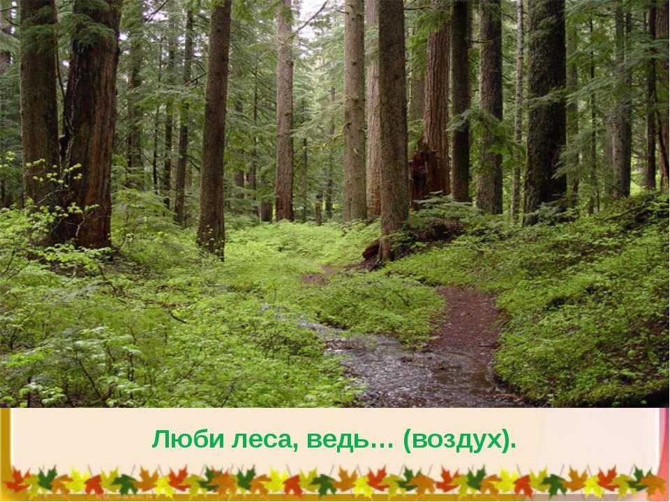 Люби леса, ведь… (воздух).