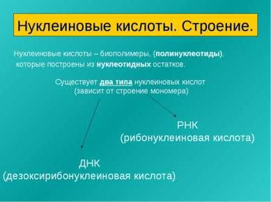 Нуклеиновые кислоты. Строение. Нуклеиновые кислоты – биополимеры, (полинуклео...
