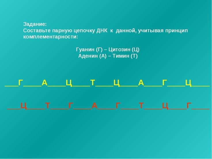 Задание: Составьте парную цепочку ДНК к данной, учитывая принцип комплементар...